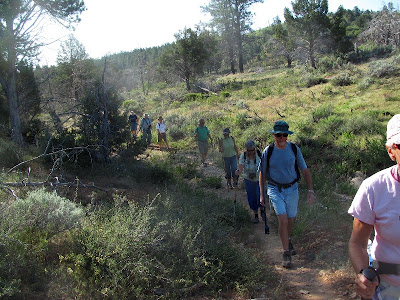 Then walk 1/2 mile to a connection with the East Rim trail. We had a group of 11 WINs hiking, which required some rather complicated shuttling.